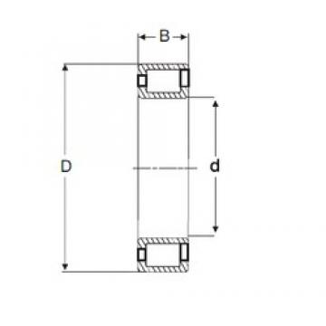 160 mm x 240 mm x 60 mm  SIGMA NCF 3032 V cylindrical roller bearings